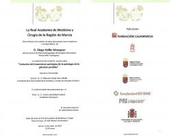 Sesión de ingreso en la Academia de Medicina, como Académico Correspondiente, de D. Diego Hellín Meseguer (21.05.2015)