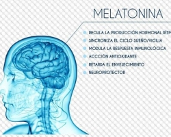 La Real Academia de Medicina y Cirugía de la Región de Murcia le invita a la  Mesa redonda sobre Melatonina, que tendrá lugar el día 29 de octubre de 2020 a las 19.30 horas